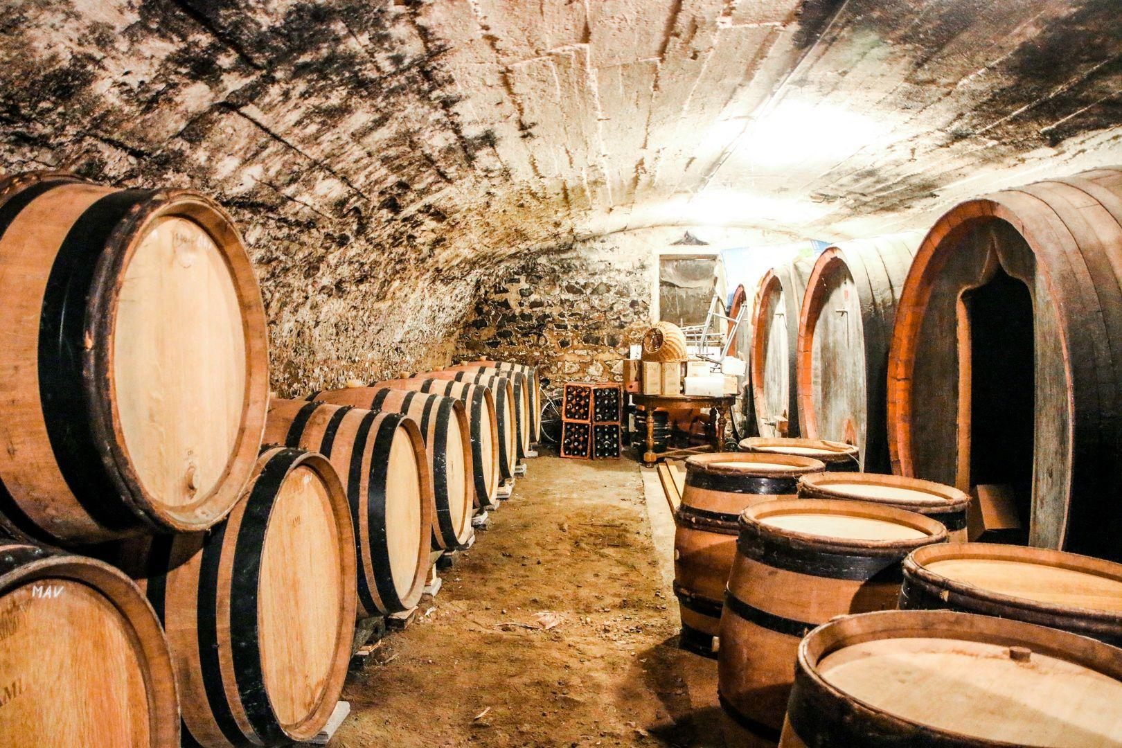nos vignes, coffrets, vin